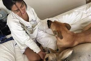 艾怡良_床上跟狗照