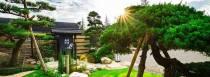 丞石建築開發有限公司 【【先生的園】是丞石建築專屬的園藝空間,提供建案中所有的樹木規劃,不只為家園找一棵樹,也為樹找一個家。在這陽明山的一隅世外桃源,種植著一株株黑松、真柏、羅漢松與百日紅等夢想名樹,最終將歸於建築。】