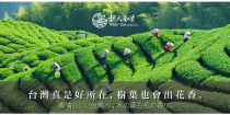 魏氏茶業有限公司 環境照
