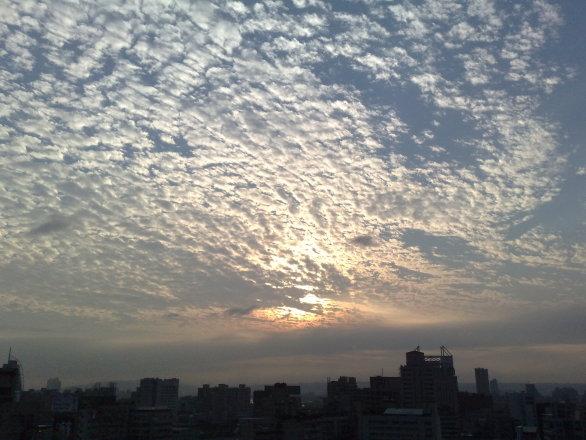 聯成數網股份有限公司 【公司陽台的室外風景。】