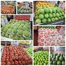 阿潭的店_禾菘企業社 【生鮮蔬果應有盡有~產地直購新鮮又便宜!】