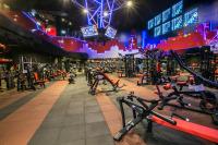 World Gym_香港商世界健身事業有限公司台灣分公司 【重量訓練區】